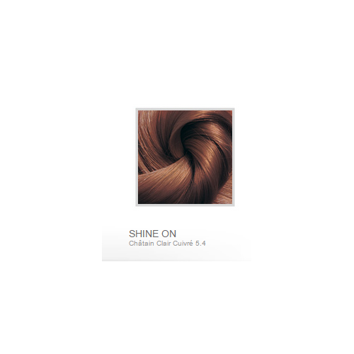 BIONIKE SHINE ON SOIN COLORANT CHEVEUX 5.4