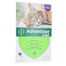 ADVANTAGE 80 CHAT  4 KG  4 X 0, 8ML