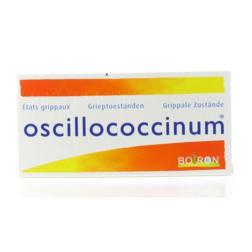 UNDA OSCILLOCOCCINUM 6 DOSES