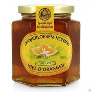 Melapi Miel Fleur Oranger 500g 3049