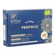 Phytolis Propolis Past Sucer Bio 3x10