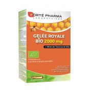 GELEE ROYALE AMPOULES 20 X 2000 MG